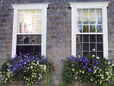 window-boxes-06